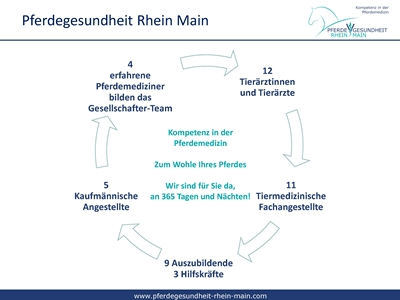 1 Jahr Pferdegesundheit Rhein Main