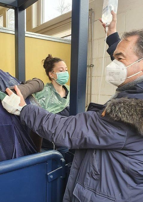 Stute tragend nach endoskopischer Zystenentfernung